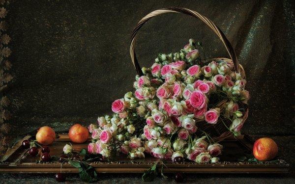 Photography Still Life Flower Rose Basket Nectarine Cherry HD Wallpaper   Background Image