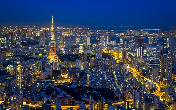 Man Made Tokyo Cities Japan Night Light City Cityscape Tokyo Tower HD Wallpaper | Background Image