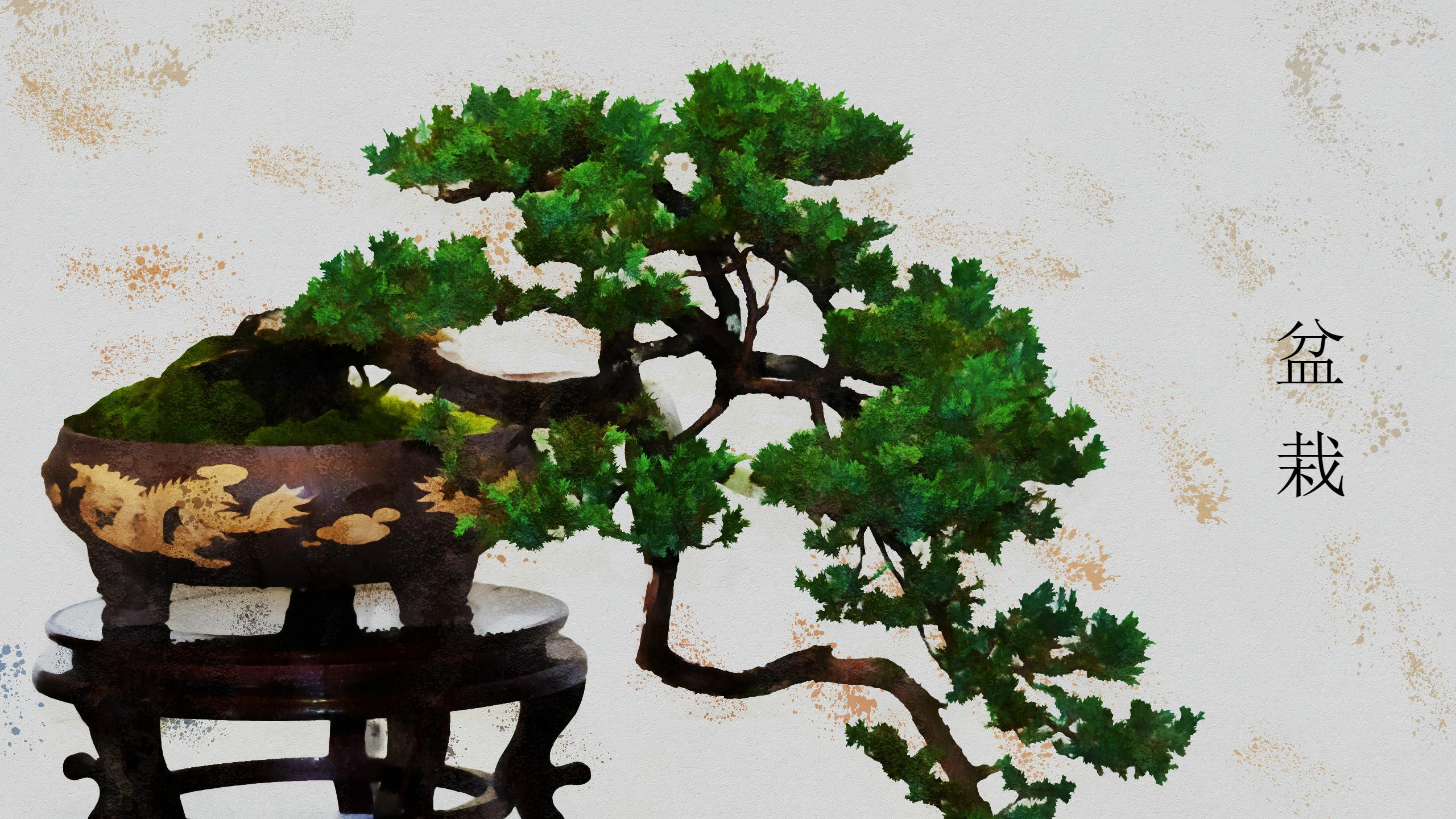 Artistic Bonsai Tree, with Bonsai in Japanese HD Wallpaper ...