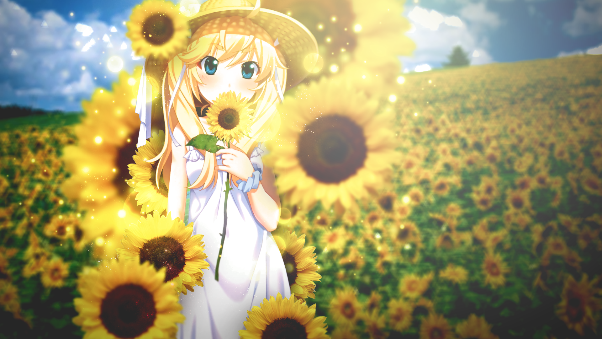 Wallpapers ID:873820