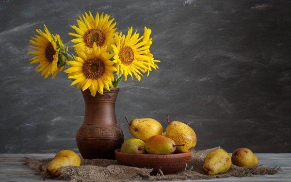 Photography Still Life Flower Sunflower Yellow Flower Pear Fruit Vase HD Wallpaper | Background Image