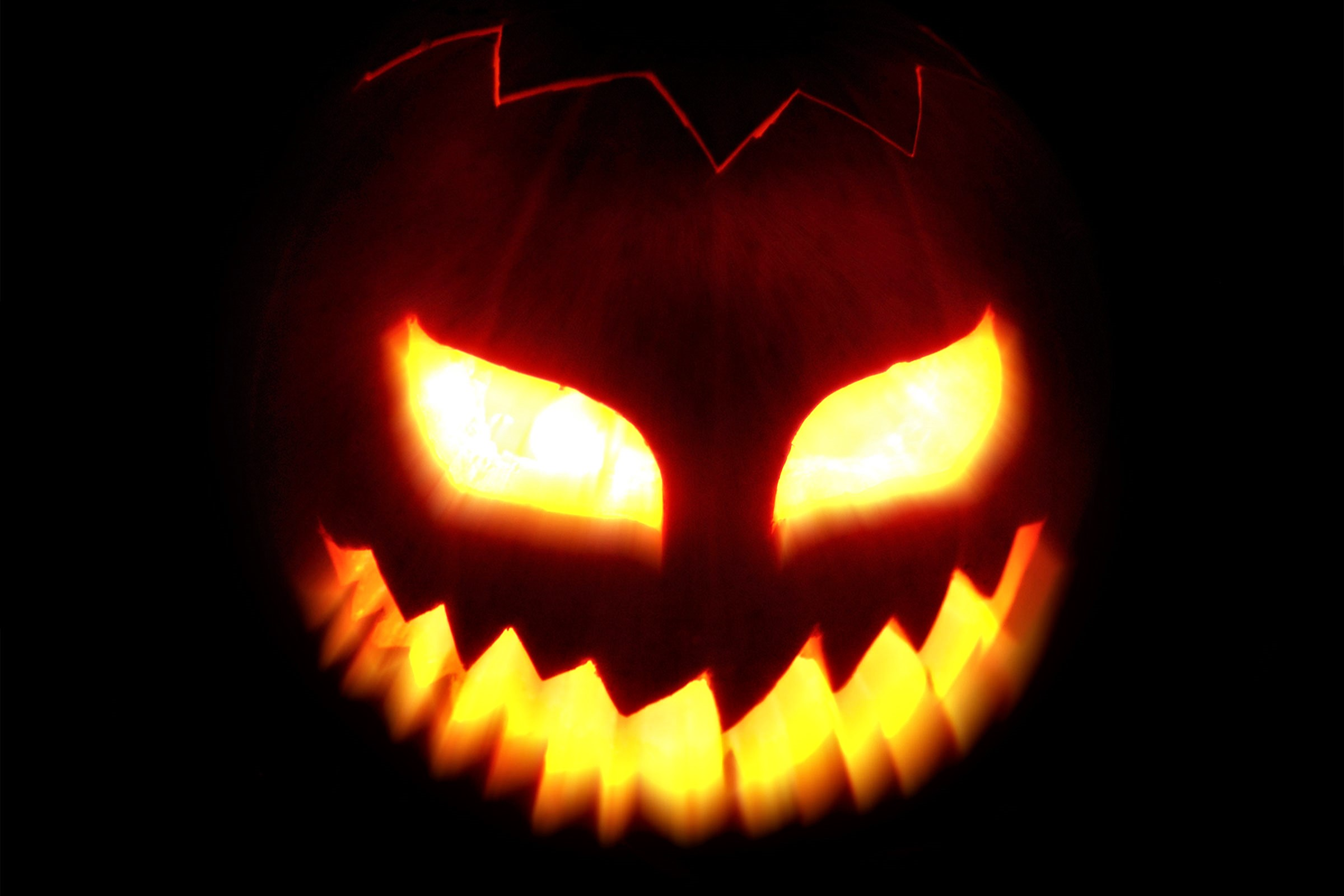 halloween full hd wallpaper and background image | 2400x1600 | id:876915