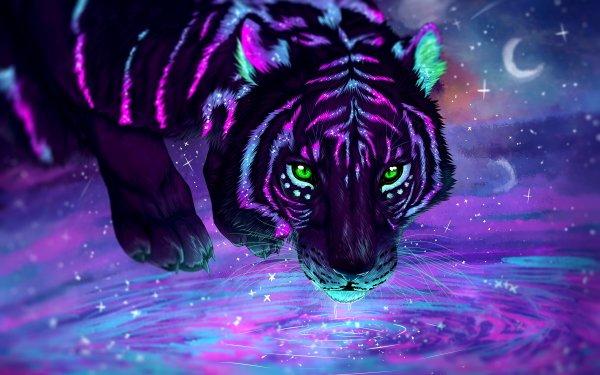 Fantaisie Tigre Animaux Fantastique Nuit Green Eyes Réflection Eau Fond d'écran HD | Image