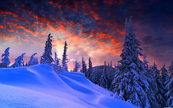 Aarde/Natuur Winter Snow Boom Evening HD Wallpaper | Achtergrond