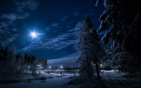Fotografía Invierno Snow Noche Carretera Bosque Fondo de pantalla HD   Fondo de Escritorio
