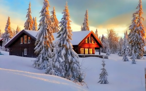 Fotografía Invierno Snow Casa Bosque Árbol Cabaña Fondo de pantalla HD | Fondo de Escritorio