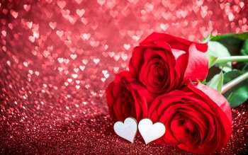 4200 Romantic Love Hd Photos Wallpaper Gratis