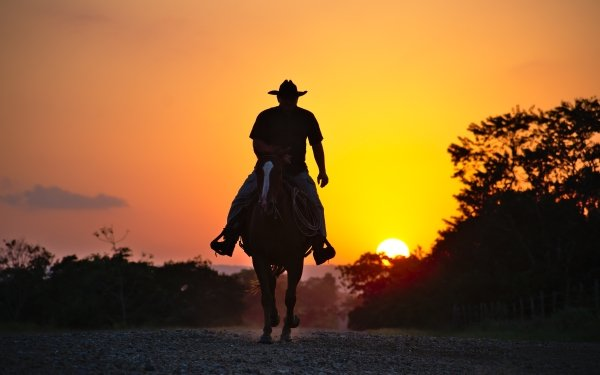 Photography Cowboy Horse Silhouette Sunset HD Wallpaper | Background Image