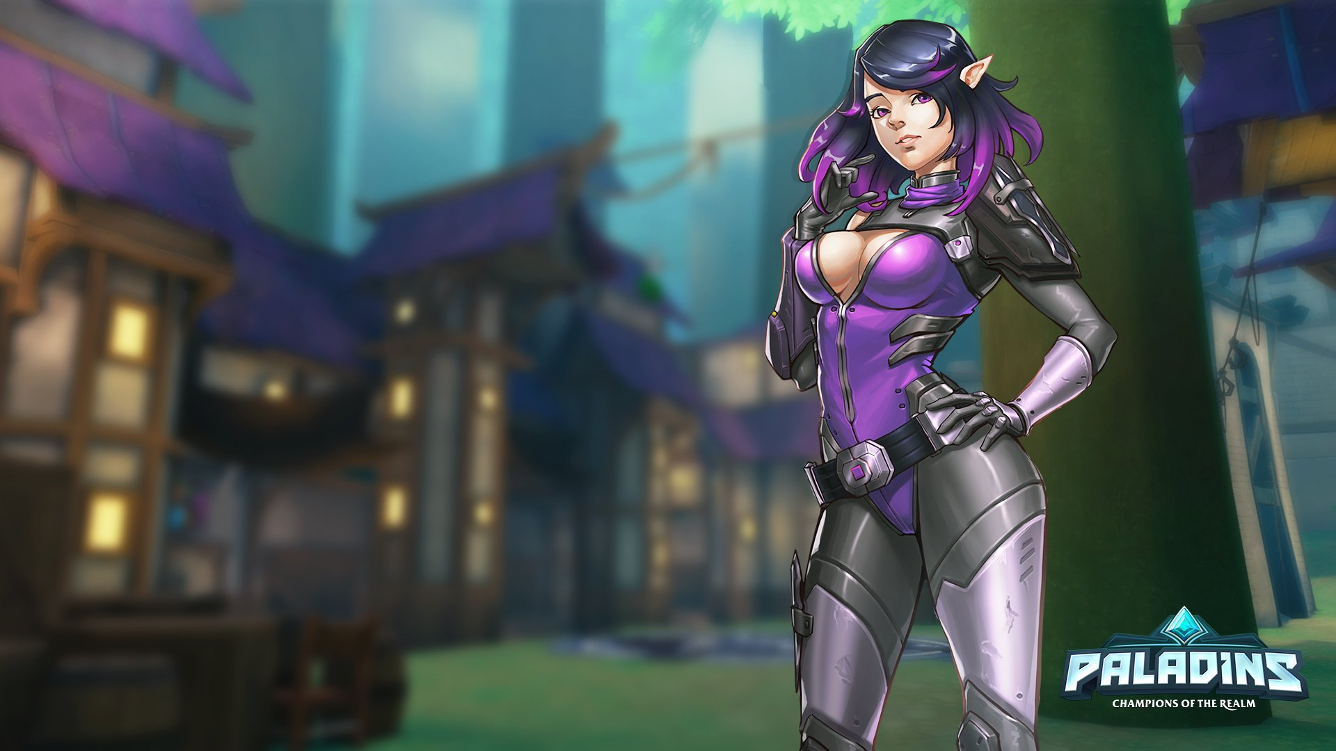 14 Skye Paladins Hd Wallpapers Background Images Wallpaper Abyss