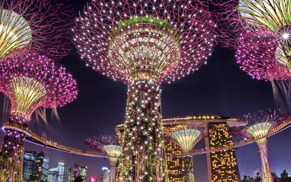 Man Made Marina Bay Sands Buildings Singapore Night Light Colorful HD Wallpaper   Background Image