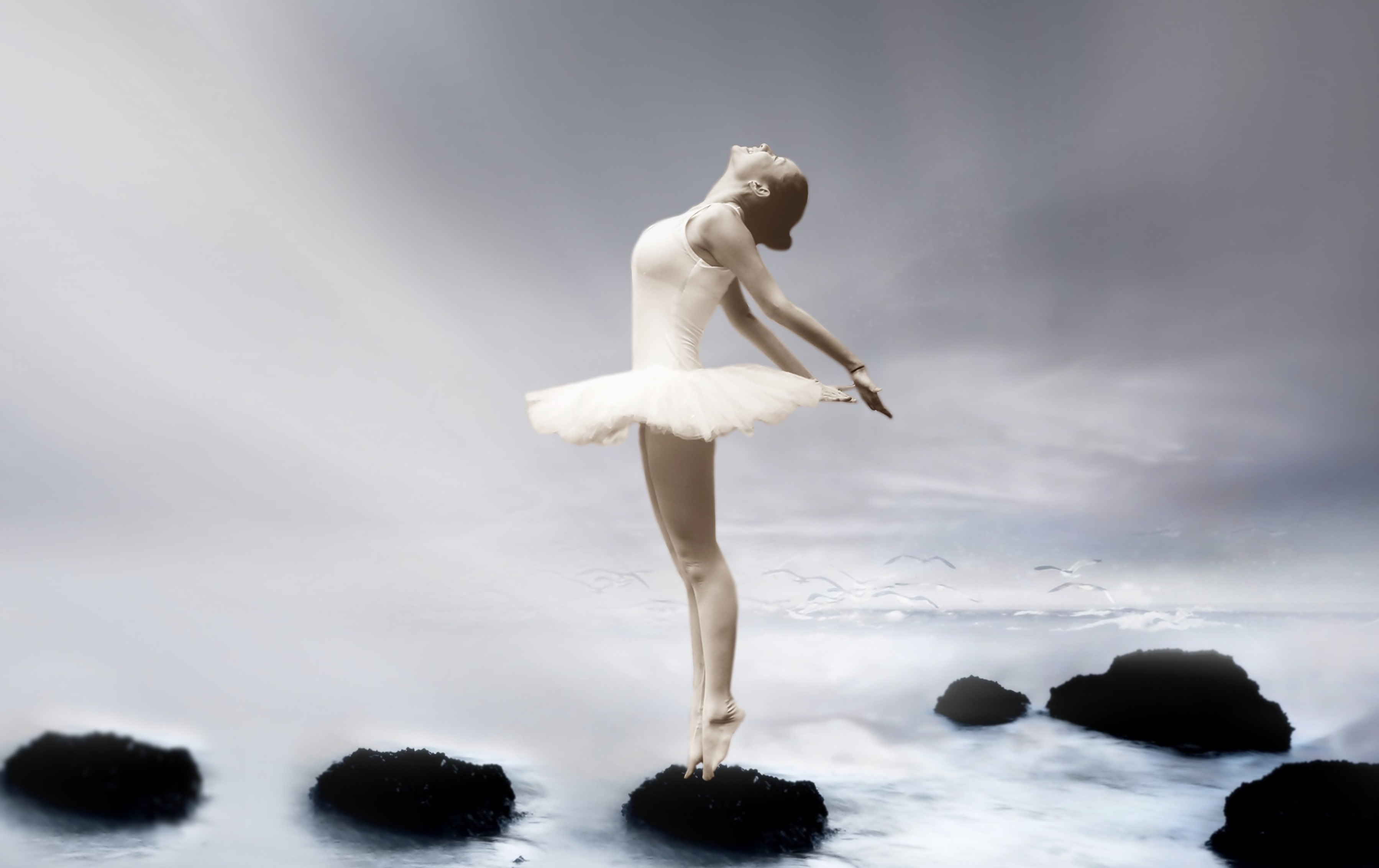 Ballet Hd Wallpaper Background Image 3598x2264 Id 940980 Wallpaper Abyss