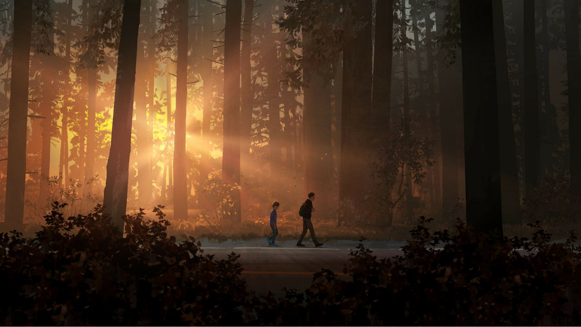 8 Life Is Strange 2 Hd Wallpapers Background Images Wallpaper