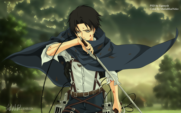 Anime Attack On Titan Levi Ackerman Black Hair Sword Weapon HD Wallpaper | Background Image