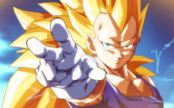 Anime Dragon Ball Super Dragon Ball Vegeta Super Saiyan 3 HD Wallpaper   Background Image