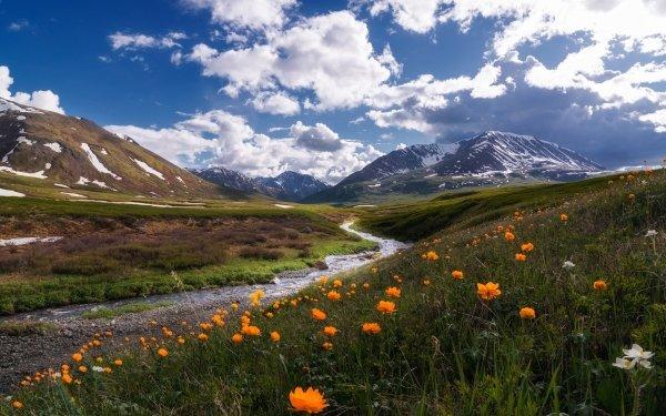 Earth Stream Nature Landscape Mountain Orange Flower HD Wallpaper | Background Image