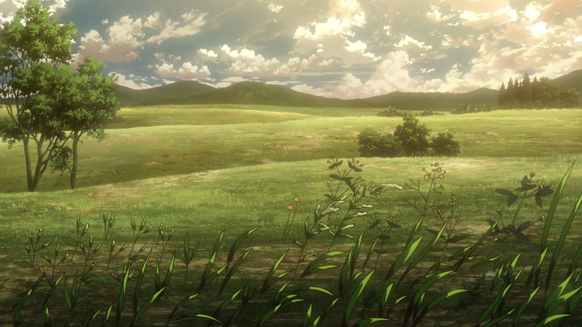 Attack On Titan Hd Wallpaper Background Image 1920x1080 Id 973328 Wallpaper Abyss