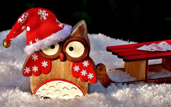 Holiday Christmas Santa Hat Sled Snow Owl HD Wallpaper   Background Image
