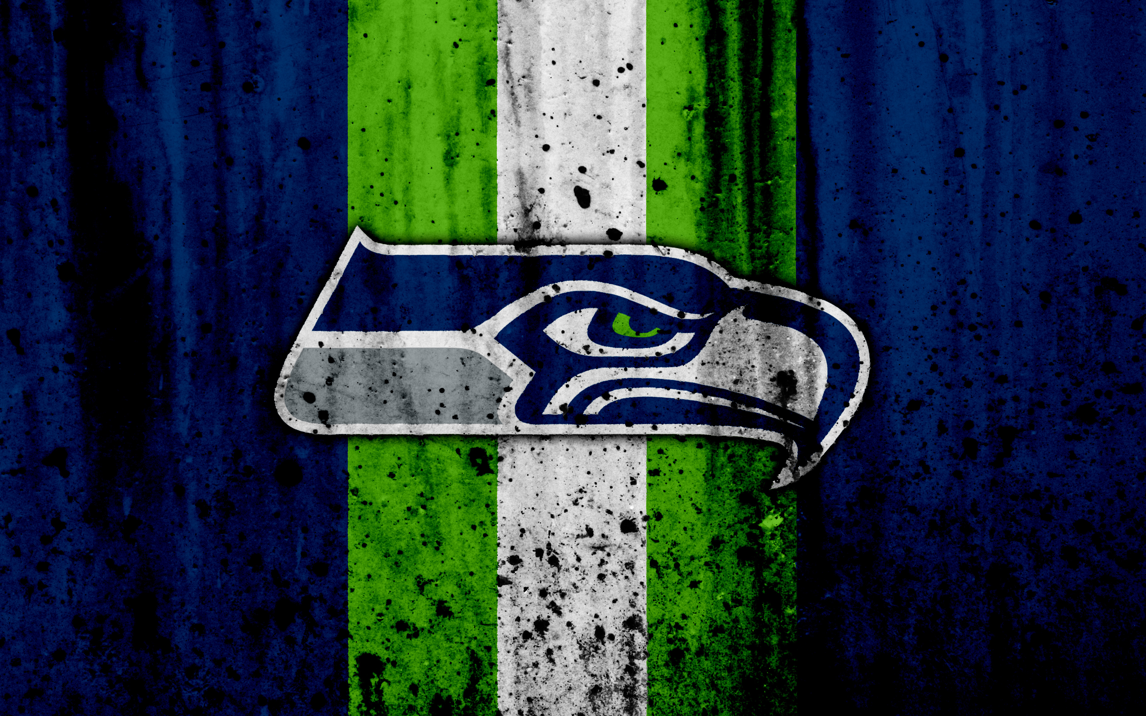 Seattle Seahawks 4k Ultra Hd Wallpaper Background Image 3840x2400 Id 988629 Wallpaper Abyss