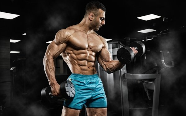 Sports Weightlifting Muscle HD Wallpaper | Background Image