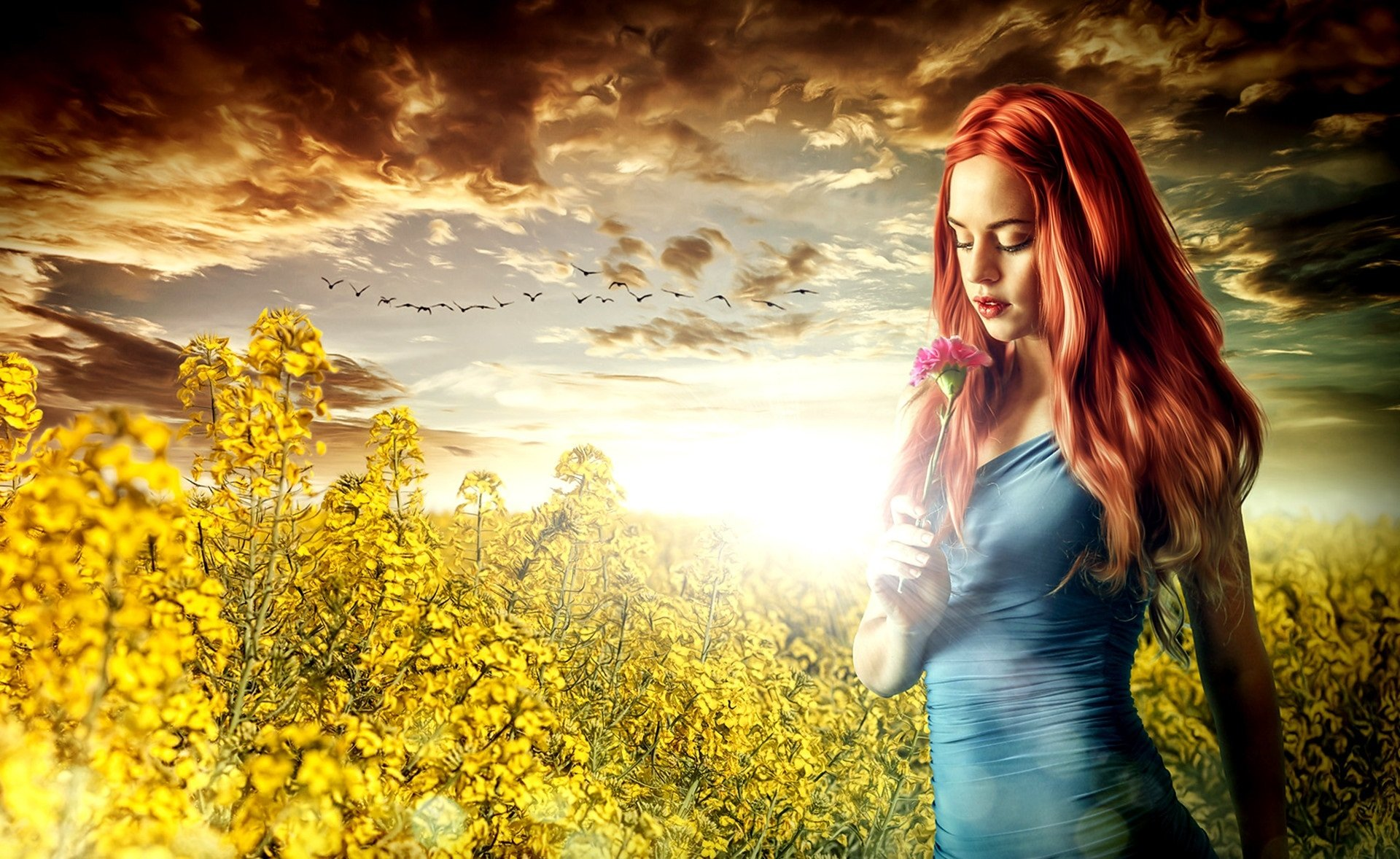 Wallpapers ID:993288